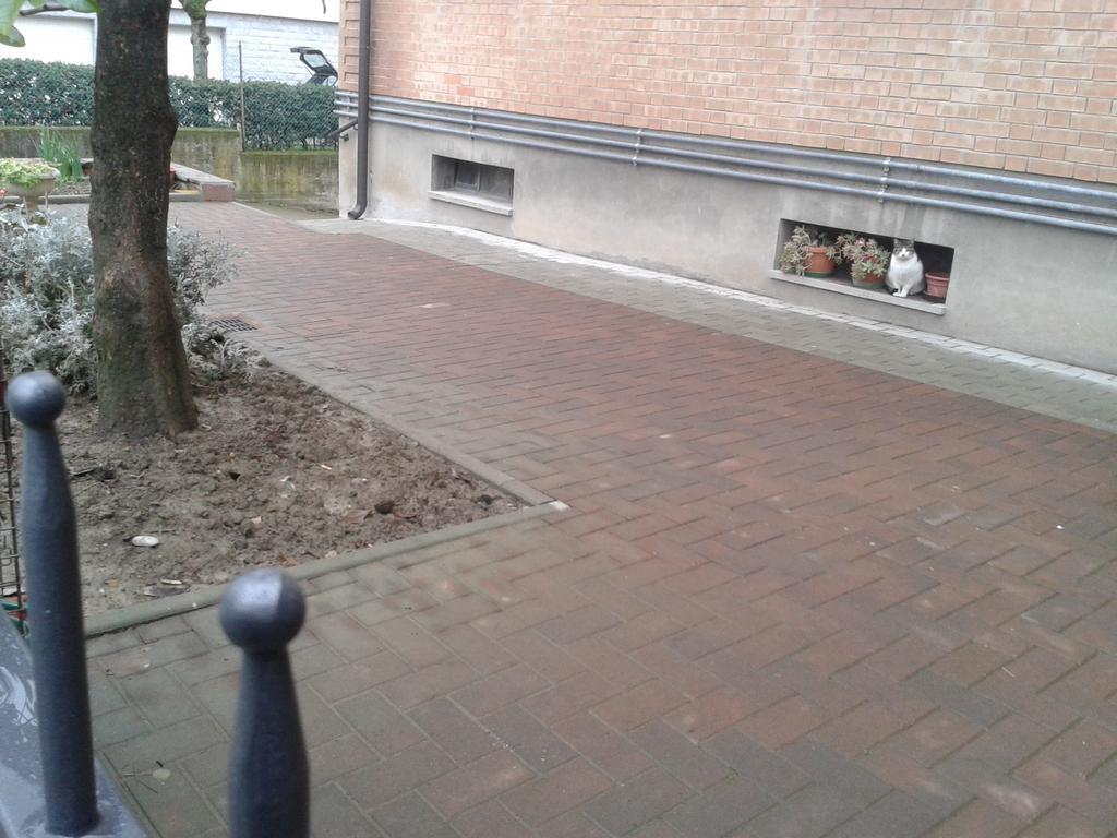 Pavimentazione esterna sassuolo via saluzzo